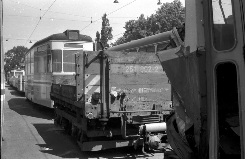 http://www.loessnitzbahn.de/uploads/pics/pfote-10.jpg