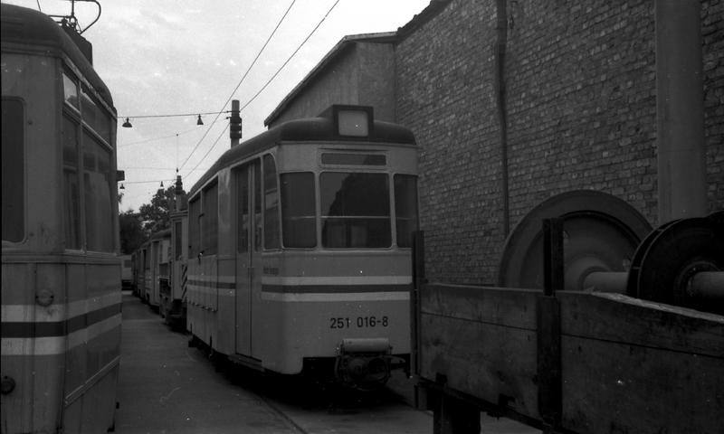 http://www.loessnitzbahn.de/uploads/pics/pfote-15.jpg