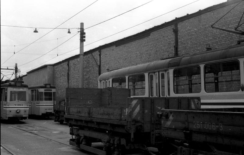 http://www.loessnitzbahn.de/uploads/pics/pfote-18.jpg
