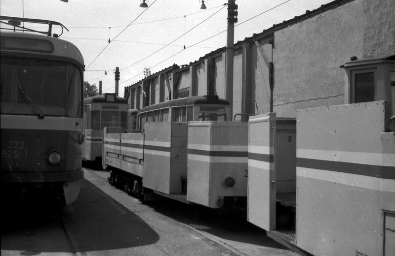 http://www.loessnitzbahn.de/uploads/pics/pfote-6.jpg
